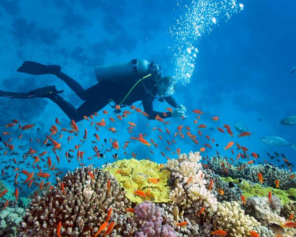 scuba-diving-vietnam
